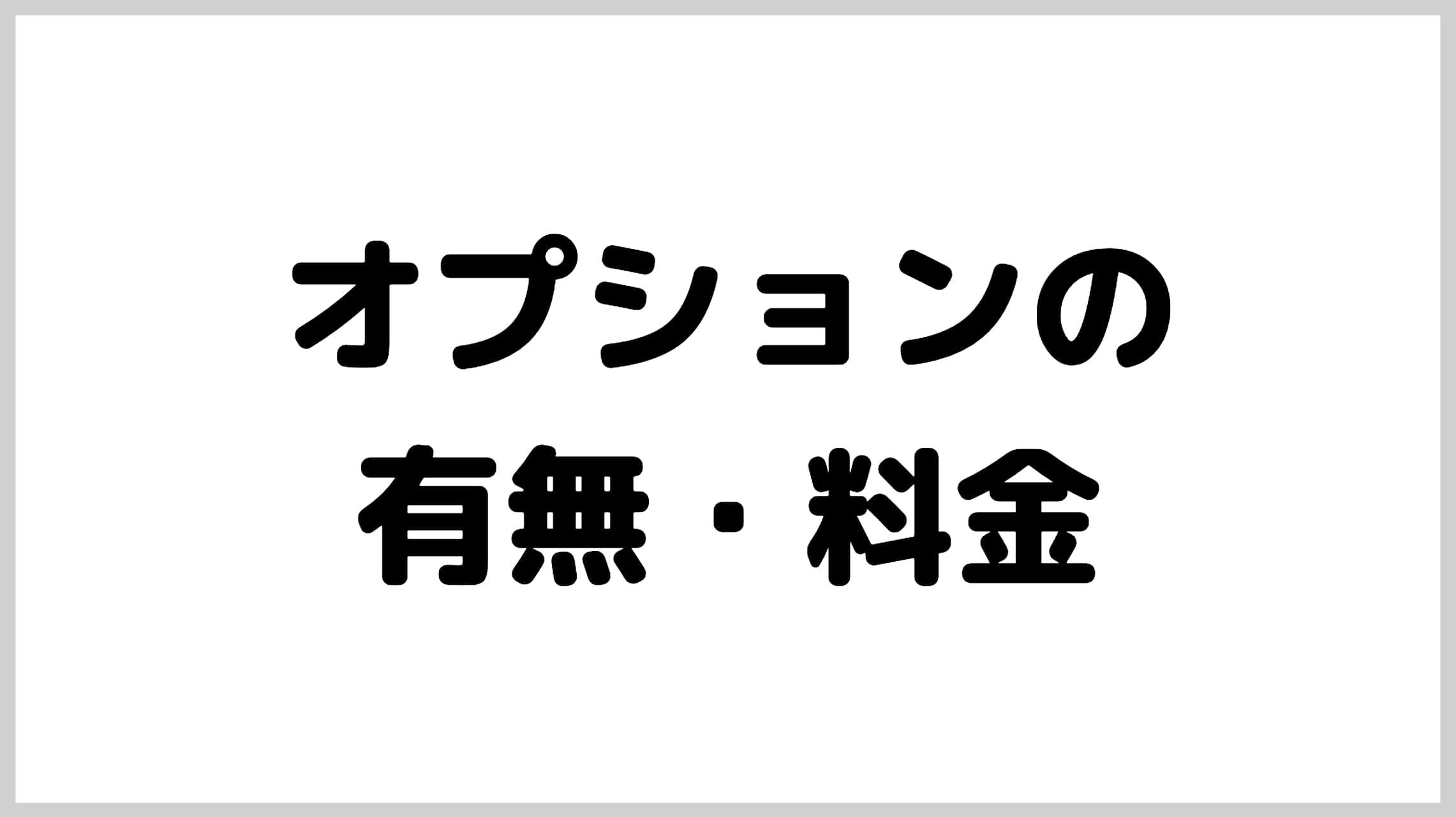 オプションの有無・料金【湘南美容の勝利】